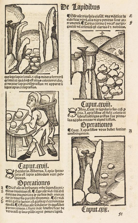 Lot 16 - Hortus sanitatis De herbis et plantis. De animalibus et reptilibus. De avibus et volatilibus. De