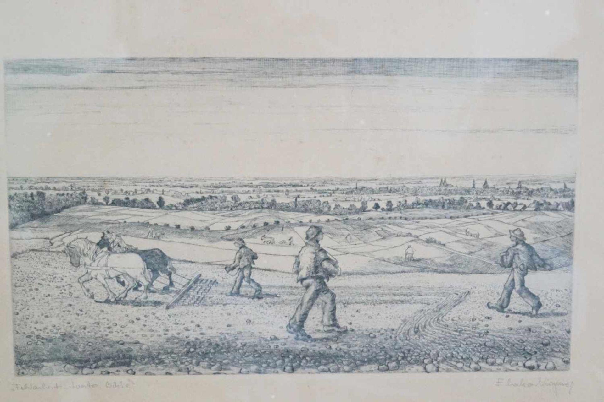 "Radierung ""Feldarbeit - Soester Börde"" Eberhard Viegener (1890-1967), Blattmaß 53 cm x 39,5 cm, - Bild 2 aus 4"