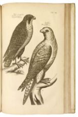 Lot 70 - Willughby, Francis; John Ray (ed.). Ornithologiæ libri tres.