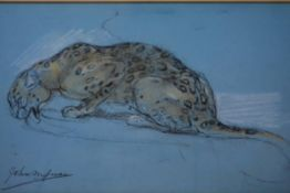 John Macallan Swan (British 1847-1910), Leopard Drinking, signed lower left, chalk pastel on blue