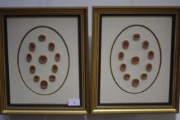 A collection of red wax seal impressions, framed and glazed as a pair. Each frame 36cm by 30.5cm