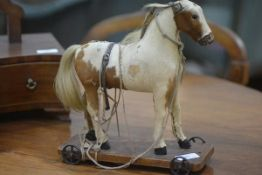 A child's pull along toy pony, c. 1910, in real piebald pony skin, on a wooden platform on wheels.