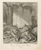 Johann Elias Ridinger, Sieben Tierdarstellungen. 1738-1740. Johann Elias Ridinger 1698 Ulm – 1767