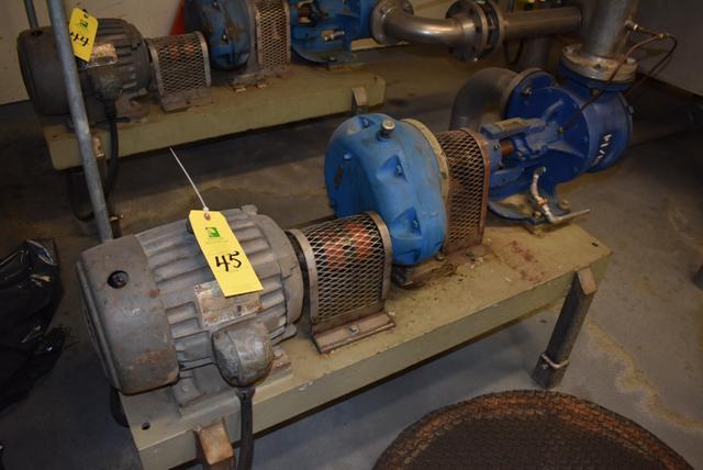 Lot 45 - Viking Model #LL125 Pump & Motor, RIGGING FEE $125