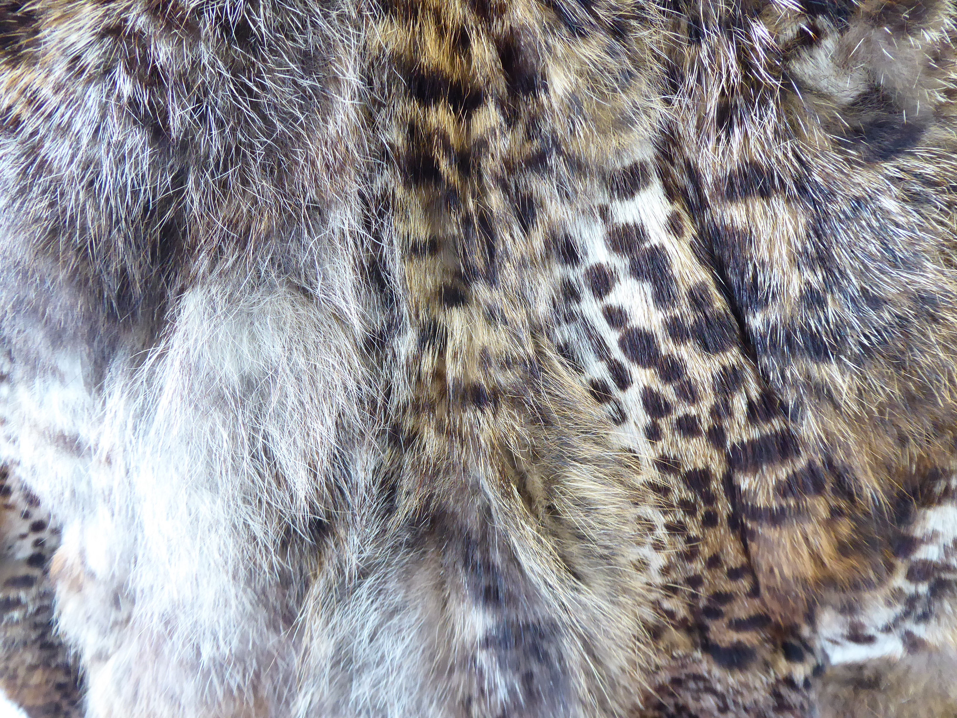 Lot 30 - A (probably 1940s) Alma Italian made (unidentified big cat) knee length,