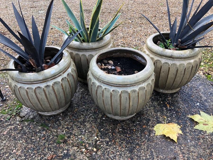 Lot 25 - A set of four glazed ceramic planters (4)