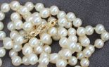 Lot 11 - A pearl necklace,