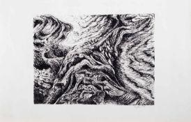 D. John (deutscher Grafiker d. 20. Jh.) Dünung Original Lithografie, 23 x 30,5 cm, ungerahmt,