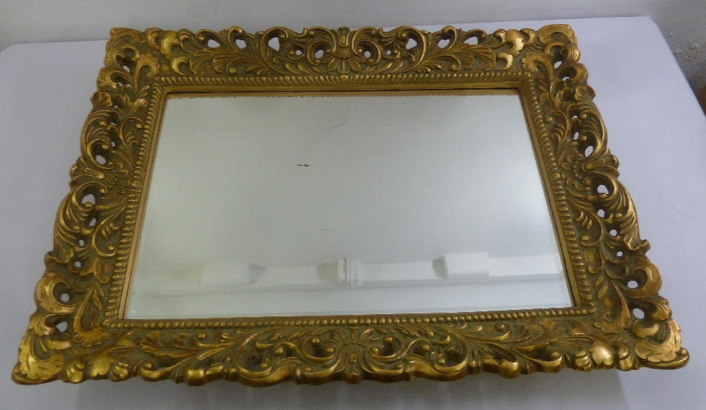 Lot 34 - A rectangular wall mirror with pierced and carved gilt wooden frame