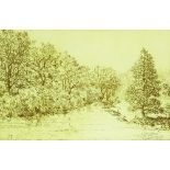 Leon Pericles (born 1949), etching, Ludlow, 1974,