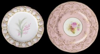 A Royal Worcester cabinet plate (2)