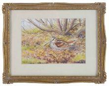 Richard Robgent (British, b.1937) 'Hen Woodcock in woodland', watercolour