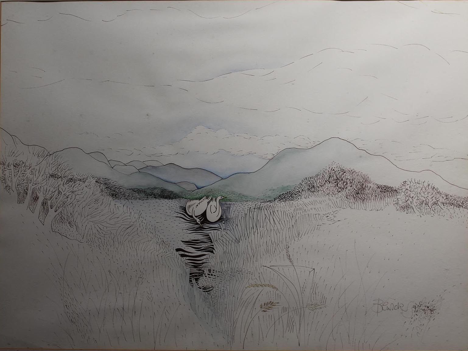 "Lot 12 - Pauline Bewick SWANS, KILLARNEY Pen & Wtercolour, 22"" x 30"" (55.9 x 76.2 cm), signed, inscribed"