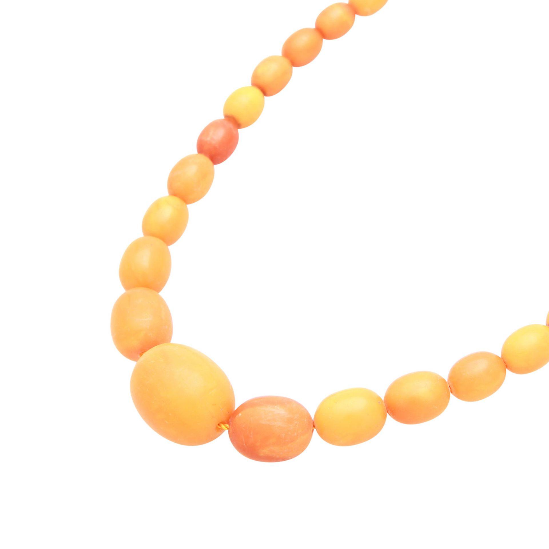 Los 78 - Bernsteinkette Egg-Yolk Butterscotch, von 18,5 - 6,3 mm Durchmesser, L: ca. 50 cm, Schließe