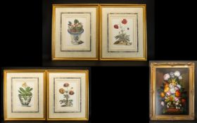 A Collection of Four Botanical Prints ea