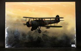 Terry Farrimond (20thC) Oil on Daler Artist's Board 'Swordfish, The Hunter', a biplane, c1944,