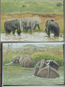 Pair of framed oil on board of elephants by Richard Maitland Laws CBE FRS ScD (1926-2014) -