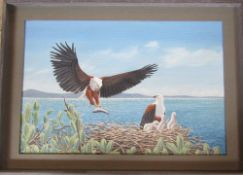 Framed oil on board of fish eagles by Richard Maitland Laws CBE FRS ScD (1926-2014) - Director of