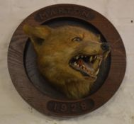 Taxidermy fox mask carved with 'Marton 1928' some damage to tongue
