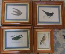 4 etchings of birds inc Swift and Blackbird in burr wood frames