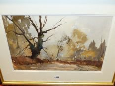 EDWARD WESSON (1910-1983) (ARR) ABOVE ALBANY, SIGNED WATERCOLOUR. 31 x 48cms.