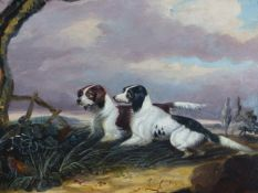 19th.C.ENGLISH SCHOOL. TWO POINTERS AND A PHEASANT, OIL ON CANVAS. 26 x 30.5cms.