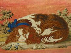 A BERLIN WOOLWORK PICTURE OF A RECLINING KING CHARLES SPANIEL WEARING A BLUE SASH COLLAR WITHIN GILT