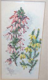 Lot 1043 - W.E. Coetzee - Foxgloves, watercolour, signed lower left, 34 x 16cm