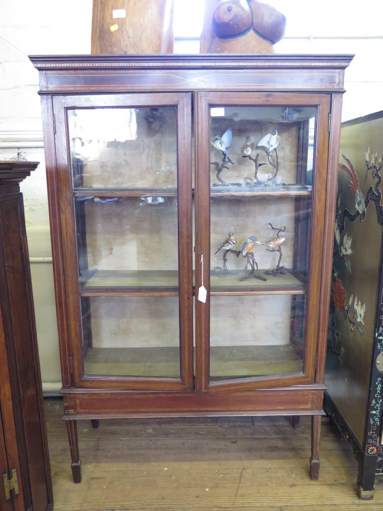 Lot 28 - An Edwardian mahogany and satinwood crossbanded display cabinet, with twin glazed doors on square