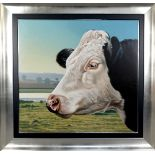 PAUL JAMES (BRITISH, CONTEMPORARY), Study of the head of a Friesian Cow in a landscape, oil on
