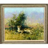 TONY FORREST (BRITISH, CONTEMPORARY), Cheetah resting in the shade of a bush, oil on canvas,