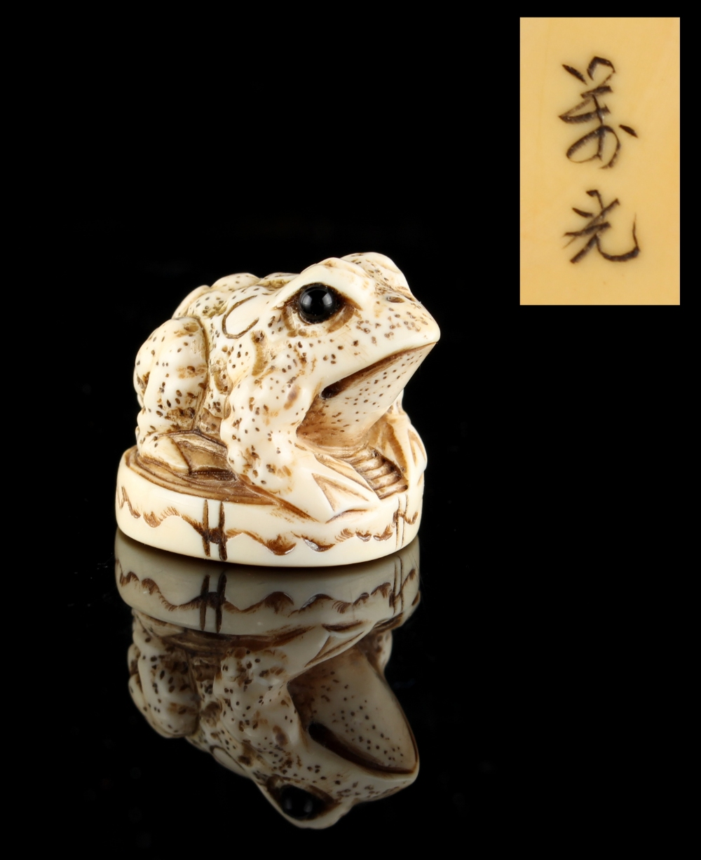 Lot 56 - The Ronald Hart Collection of Japanese Netsukes - a carved ivory netsuke modelled as a toad, with