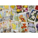 Cigarette Cards, Mixture, a variety of sets to name, Wills Garden Hints, Borough Arms 4th Series,