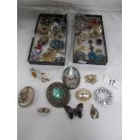 A tray of good vintage costume brooches, 37, items in total.