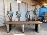 "Lot 27 - CLAUSING 4-HEAD DRILL PRESS BENCH, W/ (4) MODEL 2286 20"" VARIABLE SPEED DRILL PRESSES, WORKTOP"