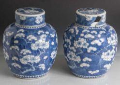 Paar Deckelvasen, China, 19. Jahrhundert, Porzellan, mit unterglasurblauem Dekor von