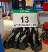 Eight 4M TENSYS Lashing Straps