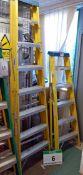 An ENGEX 8-Tread Fibreglass Alloy Step Ladder and An ENGEX 6-Tread Fibreglass/Alloy Step Ladder