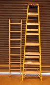 A YOUNG 8 Tread Fibregalss and Aluminum Step Ladder and A 13 Rung Double Extending Ladder