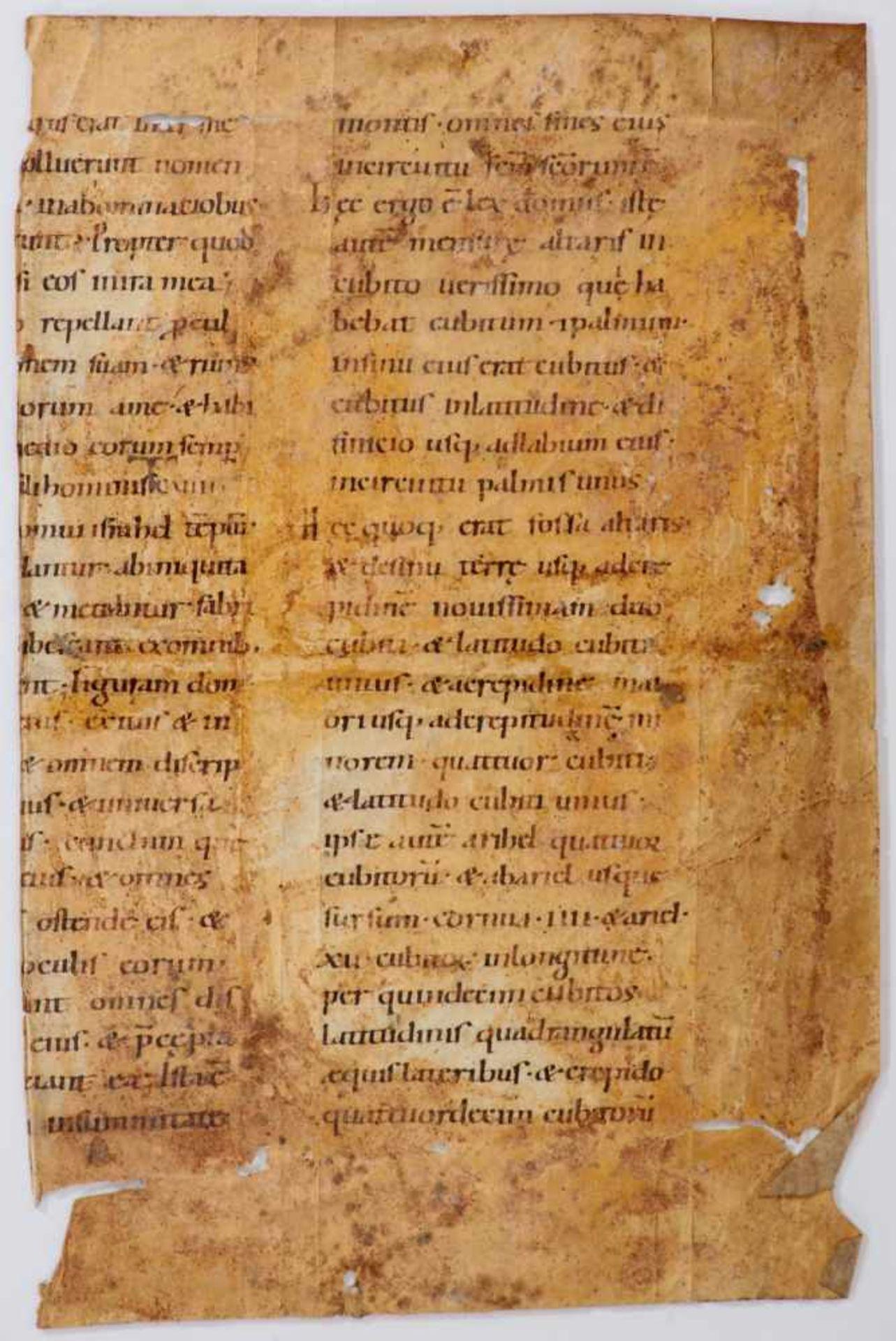 Bibel- Einzelblatt (Fragment)aus einer lateinischen Handschrift auf Pergament. Wohl Deutschland, - Bild 2 aus 2