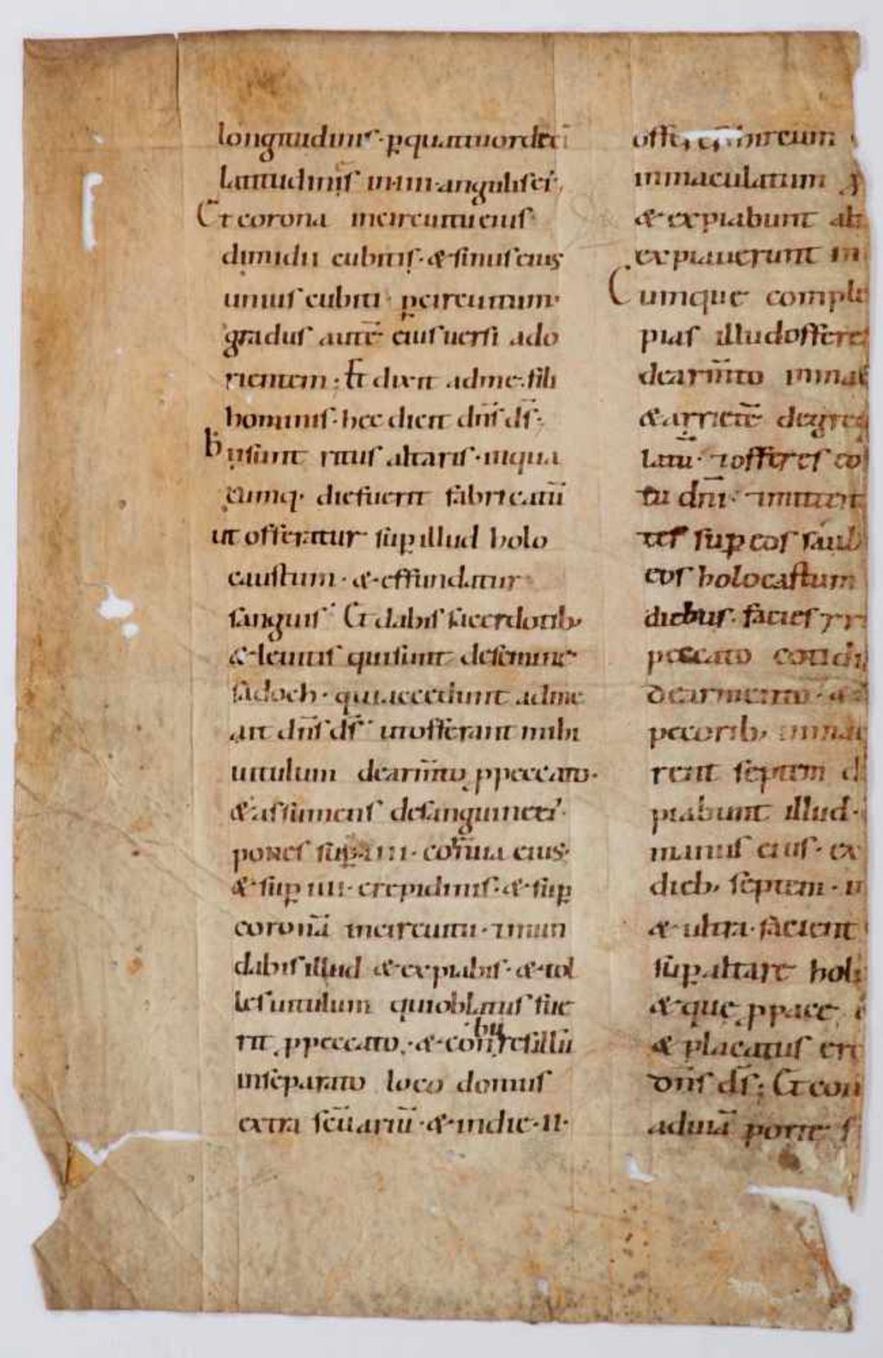 Bibel- Einzelblatt (Fragment)aus einer lateinischen Handschrift auf Pergament. Wohl Deutschland,