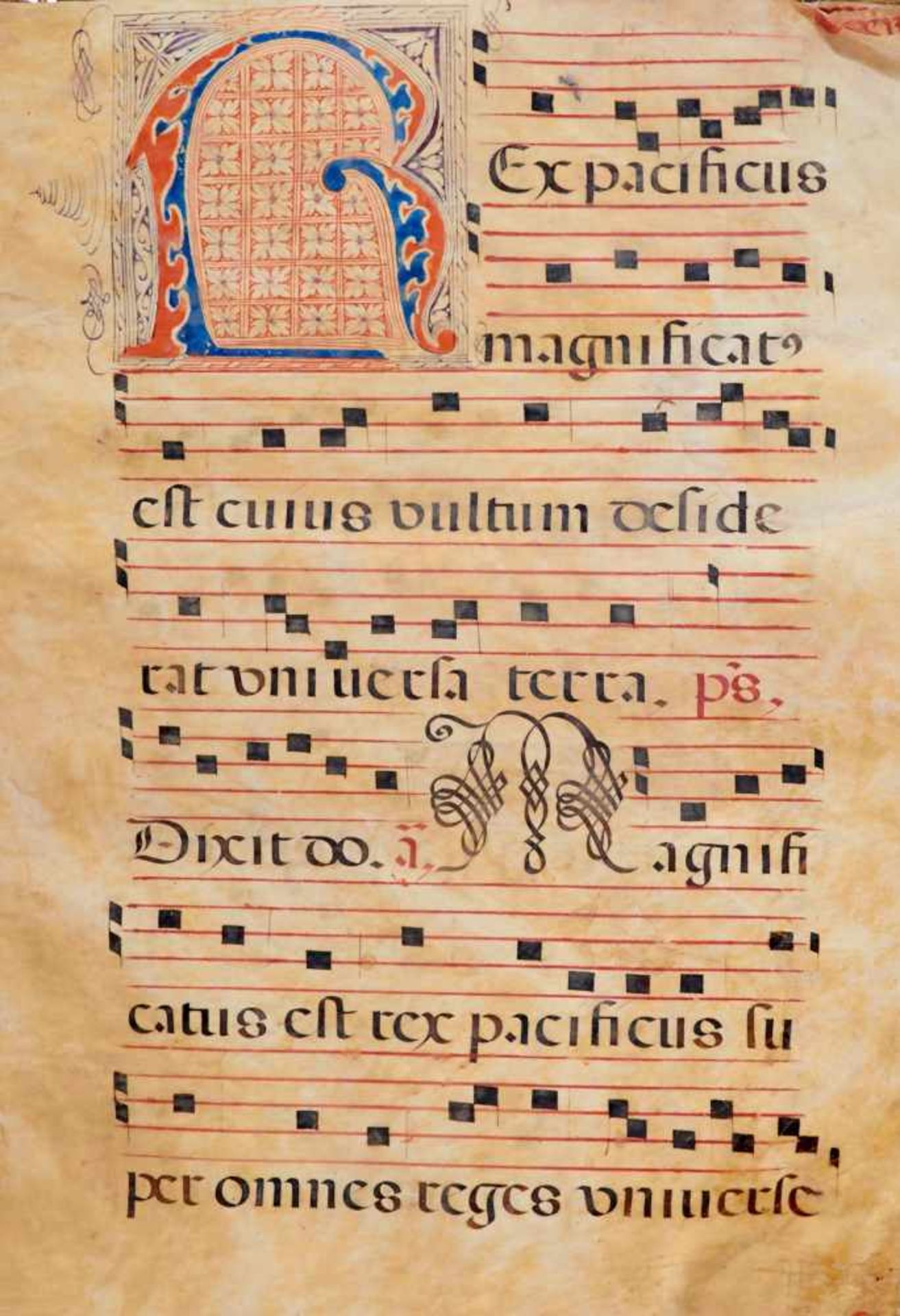 Antiphonar - Lateinische Handschrift auf Pergament. Nicht dat.Wohl Spanien, um 1600. Ca. 50 x 35 cm. - Bild 2 aus 7