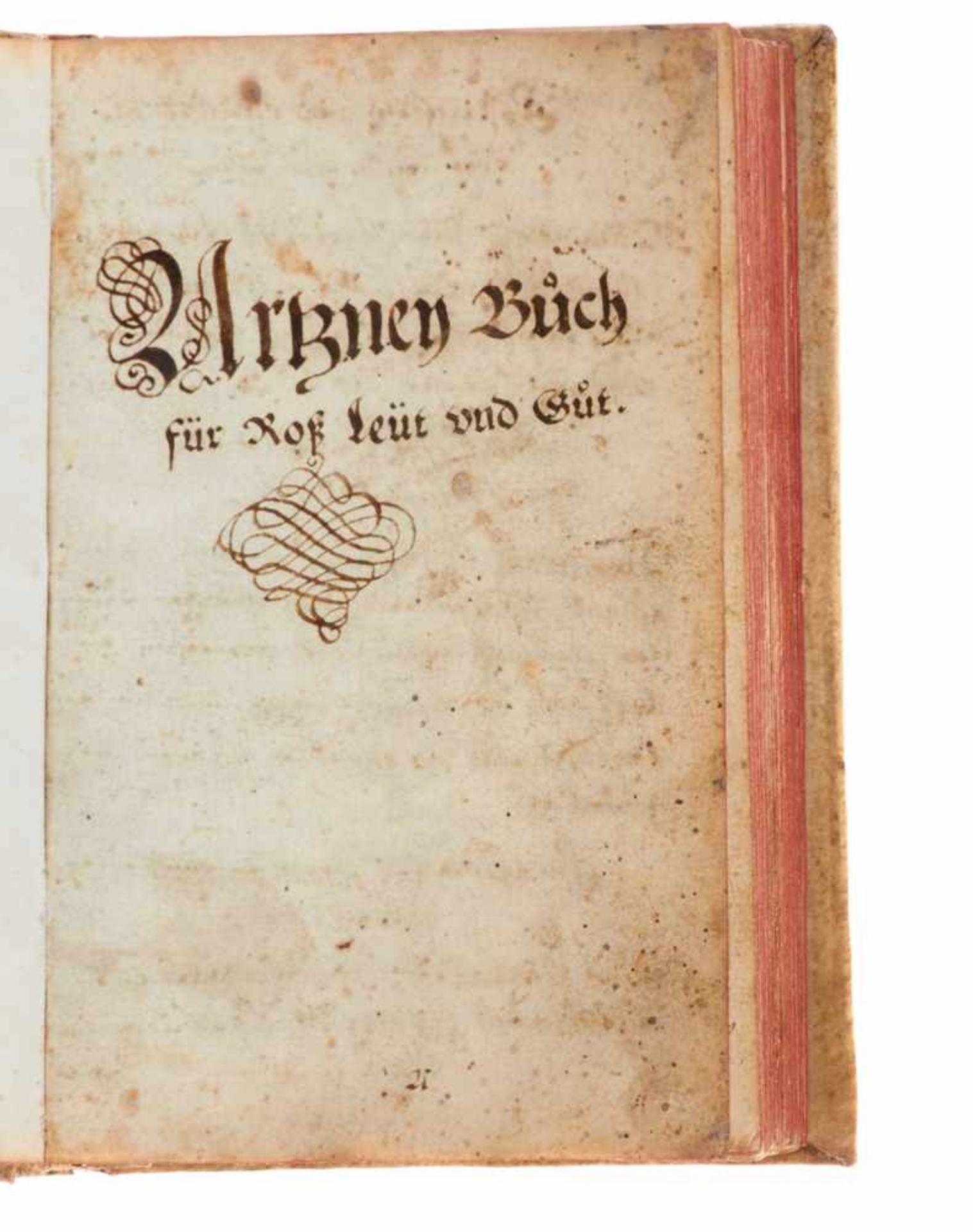 """Pferde- """"Artzney Buoch für Roß, Leut und Guot"""". Deutsche Handschrift auf Papier.Nicht dat. Wohl - Bild 2 aus 3"""
