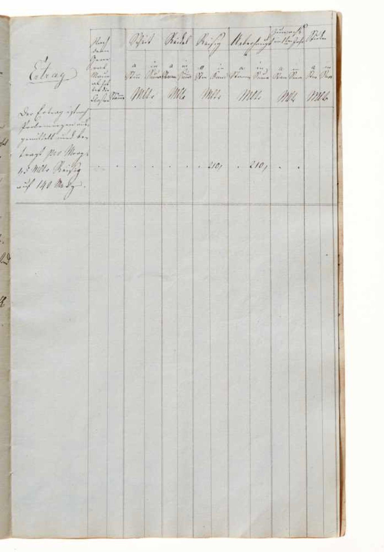 """Harz- """"Braunschweigisches Taxations-System der Forsten. Idealisch entworfen von Friedrich Otto, - Bild 4 aus 4"""