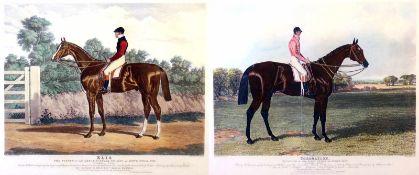 """2 Grafiken """"Englische Pferde"""" - Charles Hunt (1803-1877) Titel """"Elis"""" und """"Coronation"""", Namen"""