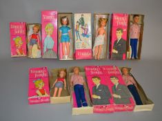 EX-SHOP STOCK: Seven Ideal Tammy and Tammy's Family Fashion Dolls, includes 2 x Tammy,