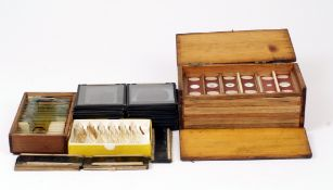 A Good Group of Prepared Microscope Slides, inc Diatoms, Insects, a Micro Photograph etc. Approx