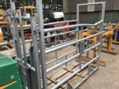 GALVANISED CATTLE CRUSH Sold Under The Auctioneers Margin Scheme, NO VAT Charged on the hammer price