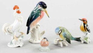 5 VogelfigurenPorzellan, Kgl. Kopenhagen/Rosenthal/Ens, 20.Jh. Nach Entw. v. O. Obermeier u.a. In
