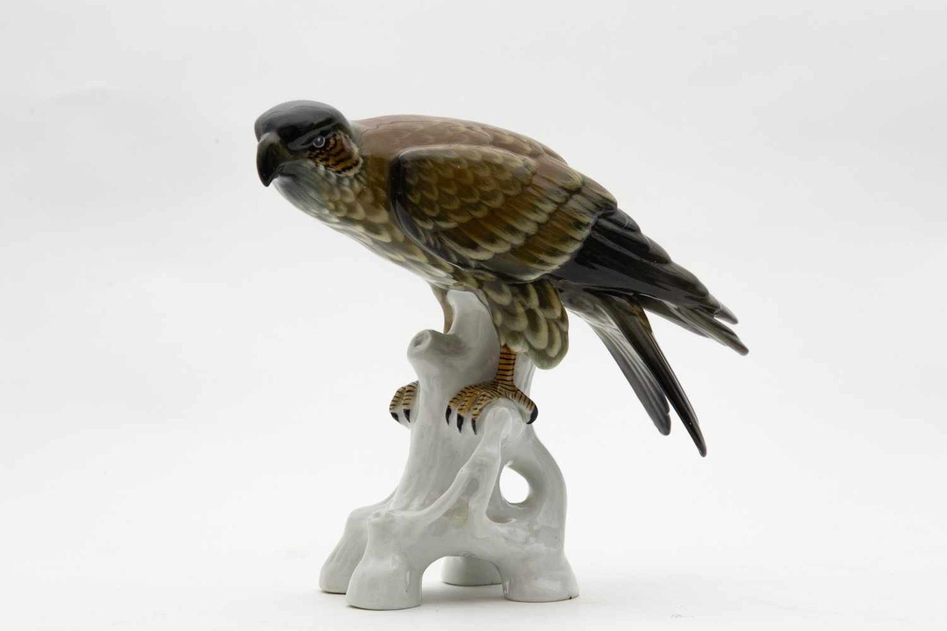 """Porzellanfigur, um 1920""""Falke"""", Sitzendorf, eine Flügelspitze unauffällig gechipt, Höhe 21 cm"""